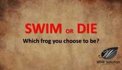 swim-or-die-which-frog-you-choose-to-be